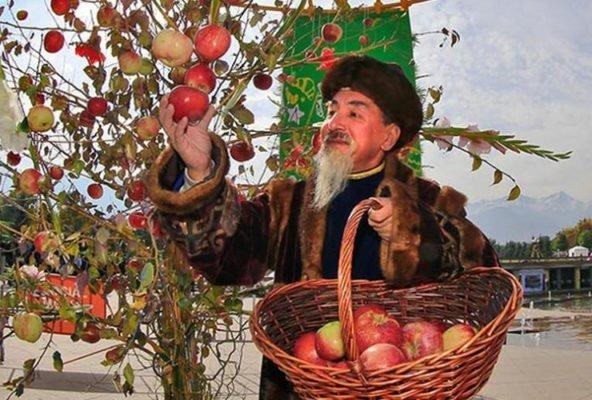 Яблоки со всего мира