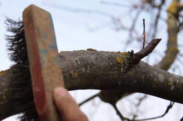 Зачистка ствола металлической щёткой