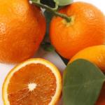 Апельсин Фрагола