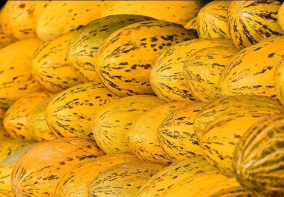 Жёлтые дыни