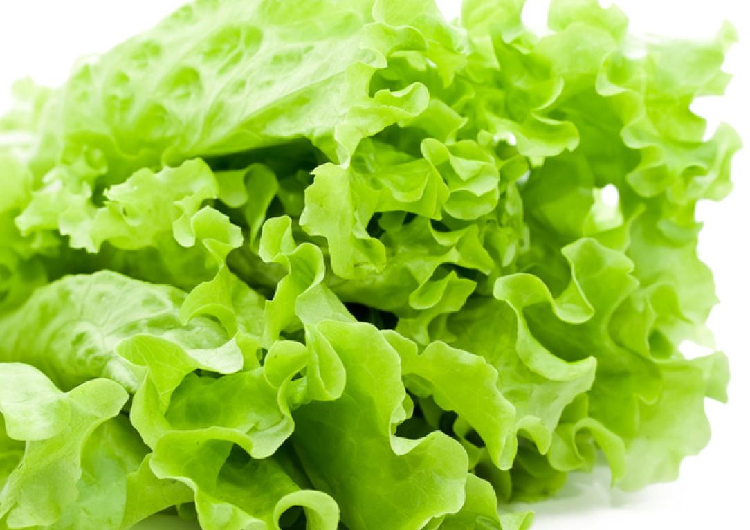 техническом листик салата картинка приготовить мясо по-албански