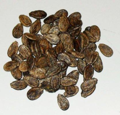 Калибровка семян