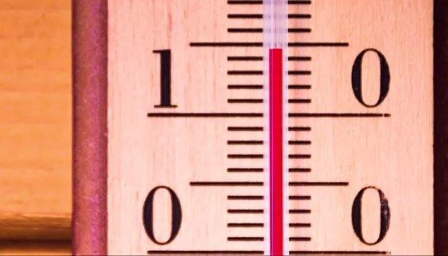 Температура для рассады