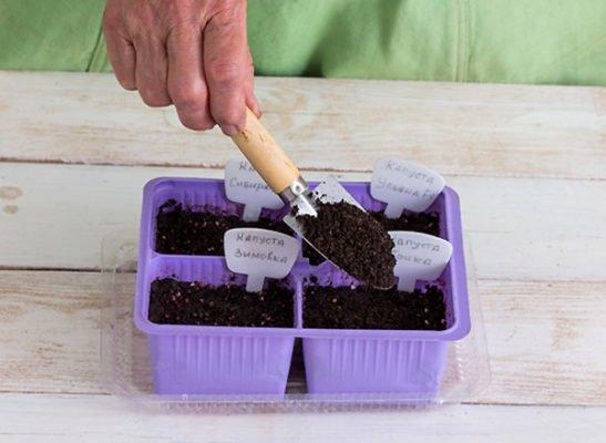 Наполнение горшочков грунтом