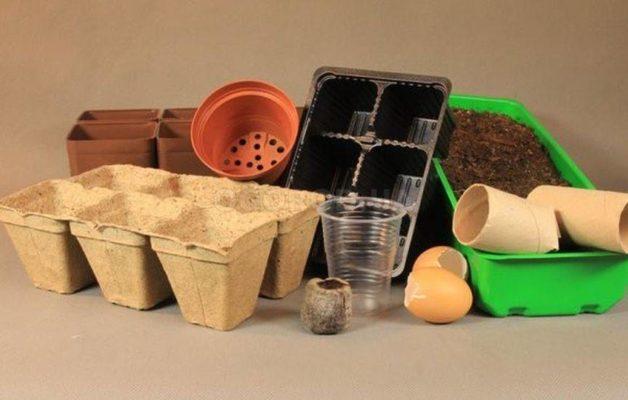 Ёмкости для выращивания рассады
