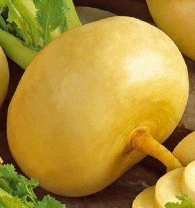 Репа — корнеплод