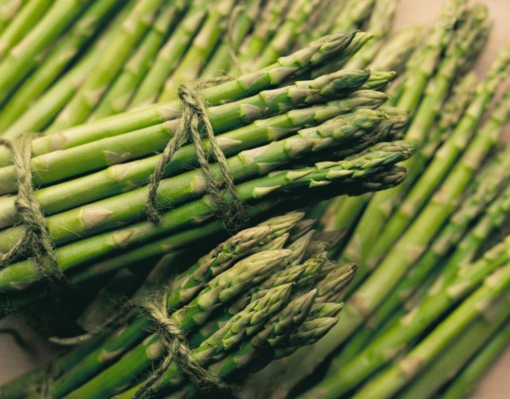 Аспарагус овощной - правила посадки и ухода в открытом грунте, видео