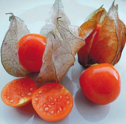 Плоды физалиса в разрезе