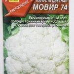 Сорт цветной капусты Мовир 74