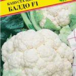 Сорт цветной капусты Балдо