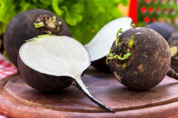 Плод чёрной редьки в разрезе