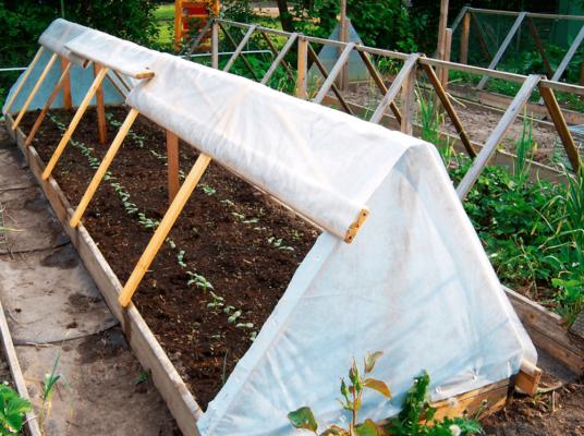 Выращивание капусты на тёплых грядках