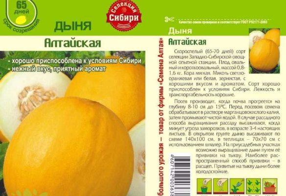 Семена дыни Алтайская