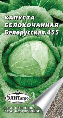 Капуста сорта Белорусская 455