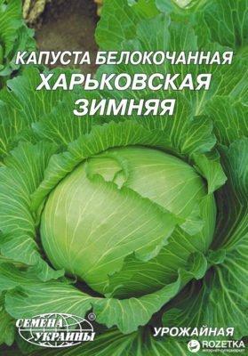 Капуста сорта Харьковская зимняя