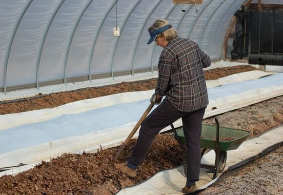 Подготовка теплицы для высадки томатов