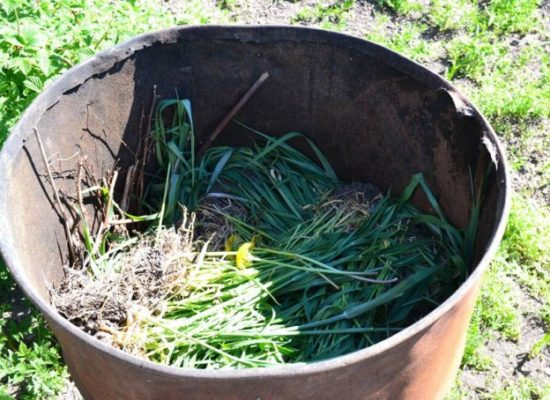 Подготовка грунта для посадки огурцов