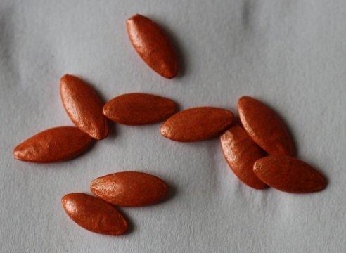 Инкрустированные семена огурцов