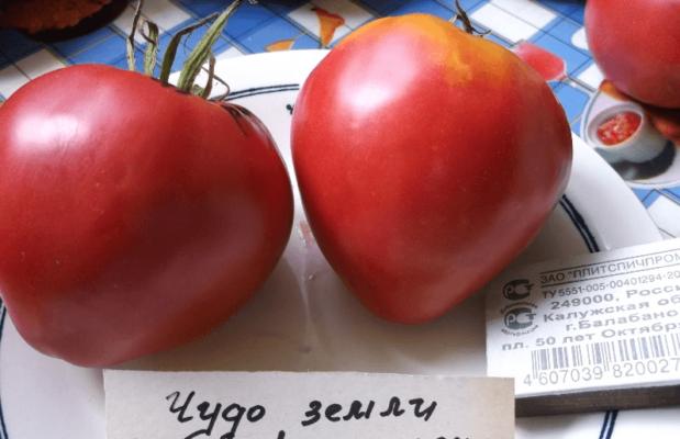 Плоды томата Чудо земли в тарелке