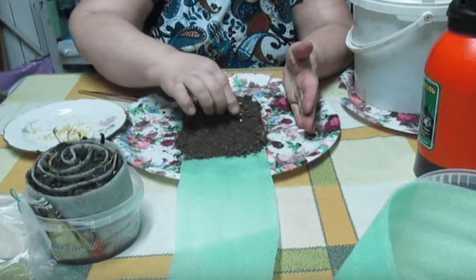 Почва на подложке