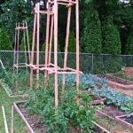 Жёсткие рамы для томатов