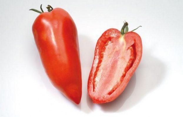 Плод томата Корнабель