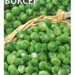Сорт брюссельской капусты Боксёр