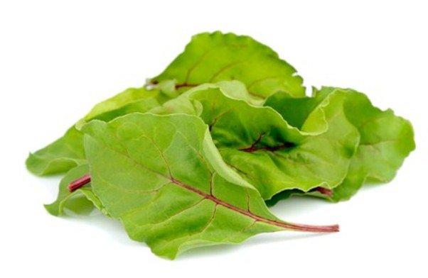 Листья свёклы