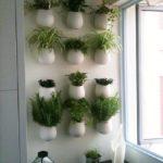Подвесные кашпо с зеленью