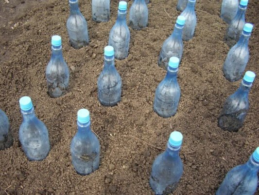 Укрытие бутылками