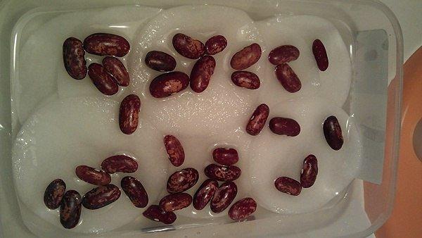Замачивание семян фасоли