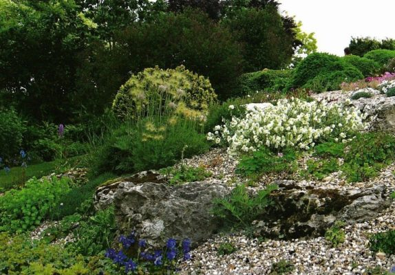 Растения на склоне в стиле шале