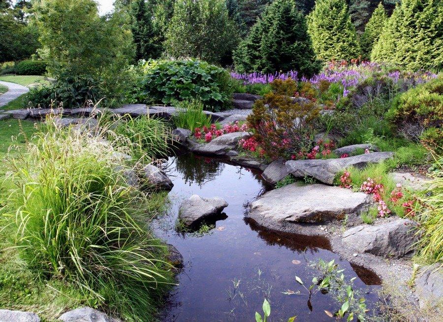 Ландшафтный дизайн с озером фото