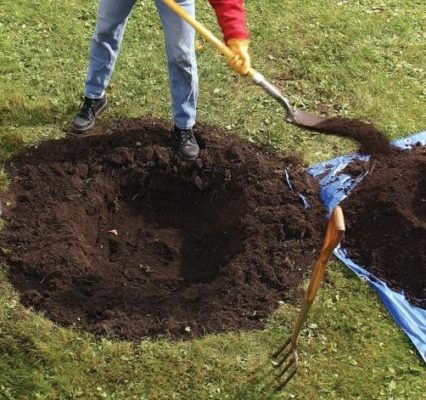 Посадочная яма и отдельно насыпанная плодородная земля