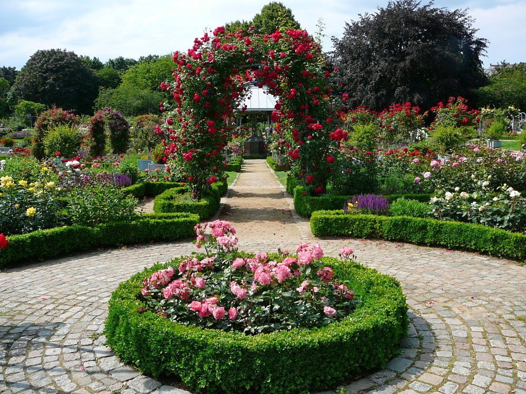 можно прекрасно ландшафтный дизайн с розами фото вещи, изготовленные своими